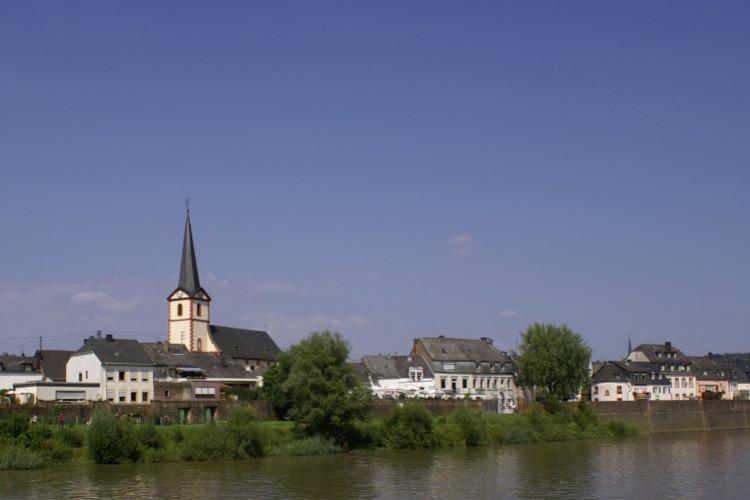 Mosel in Pfalzel