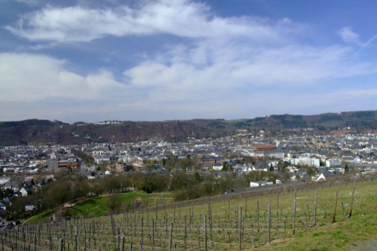 Blick auf die Olewiger Weinberge und Trier