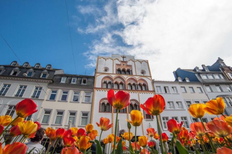 Dreikönigenhaus im Frühling