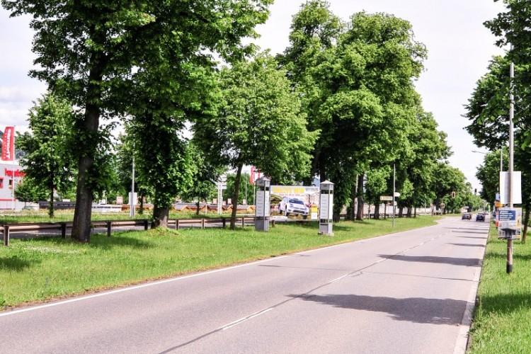 Mittelstreifen Luxemburger Straße