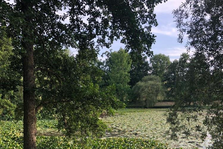 St Matthew's Lake (Mattheiser Weiher) in Summer