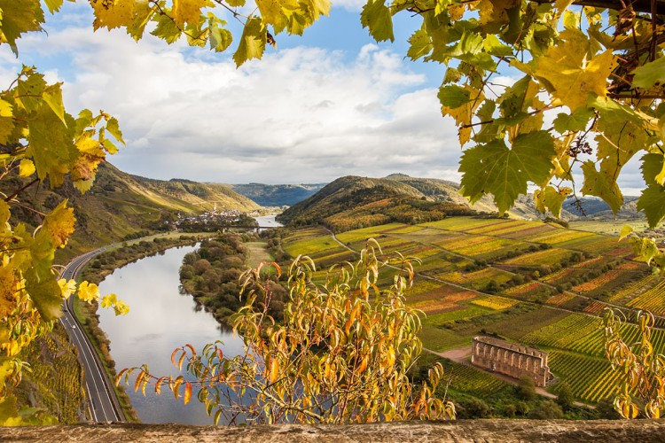 View onto the Moselle valley - © Alice-D/shutterstock.com