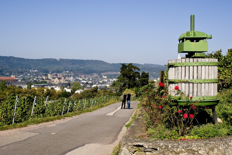 Winemaking tour along the Trier Wine Culture Trail