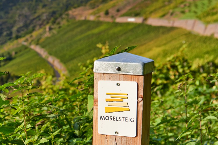 Moselle Hiking Trail