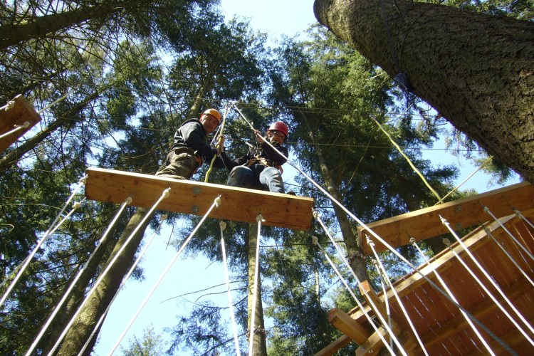 Climbing High rope Course