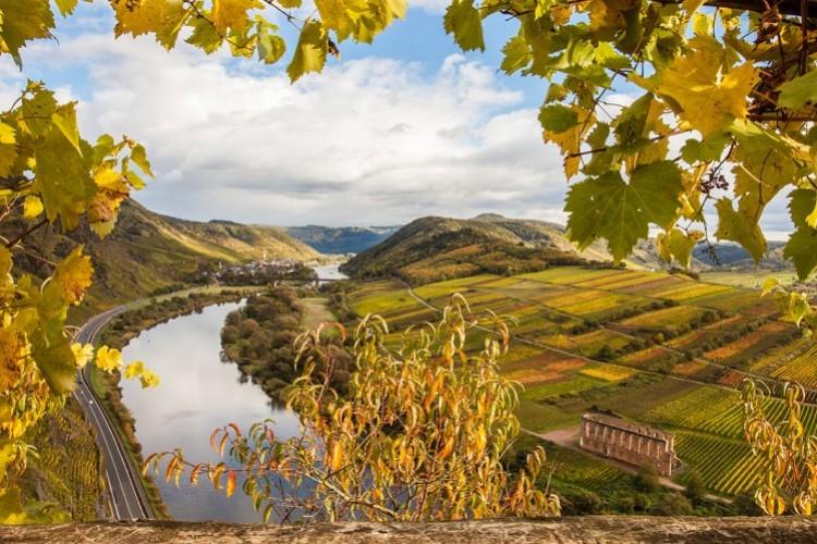 Vue sur la vallée de la Moselle  - © Alice-D/shutterstock.com