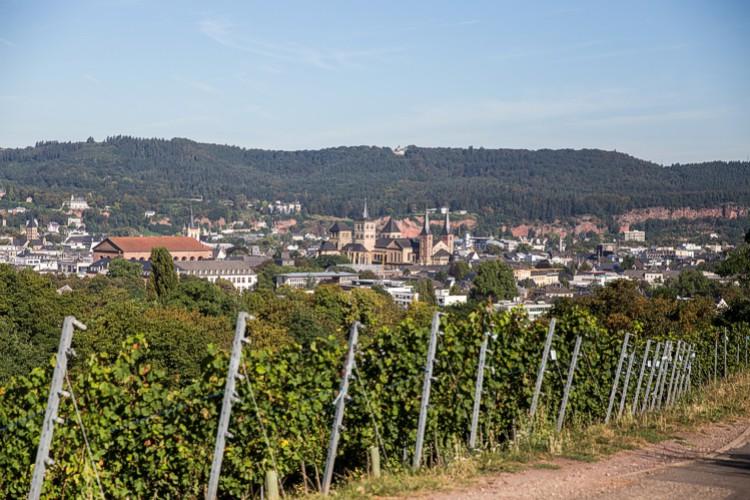 Weinwanderung durch Trier