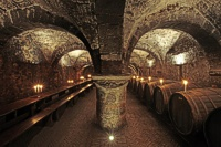 Wine Cellar Tour for Explorers